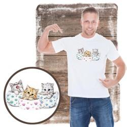 rozmiar koszulka męska