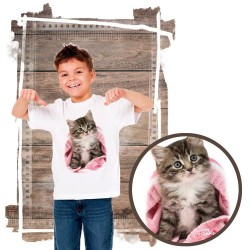 koszulka z kotem PINK BLANKET KITTEN