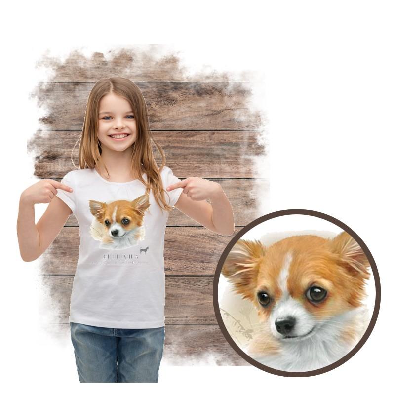 """Koszulka dziewczęca z psem """"chihuahua"""""""