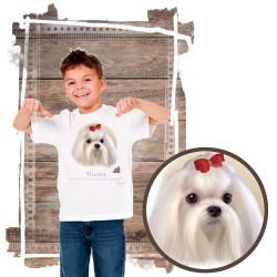 """Koszulka chłopięca z psem """"maltańczyk"""""""