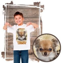 """Koszulka chłopięca z psem """"chihuahua kocha zażarcie"""""""