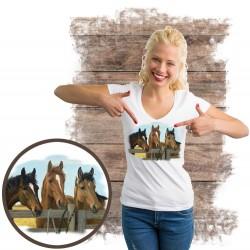 "Koszulka damska z koniem ""CARROTS PLEASE"""