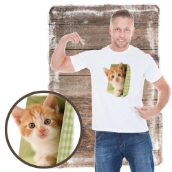 koszulka z kotem KITTEN-IN-GREEN-POT