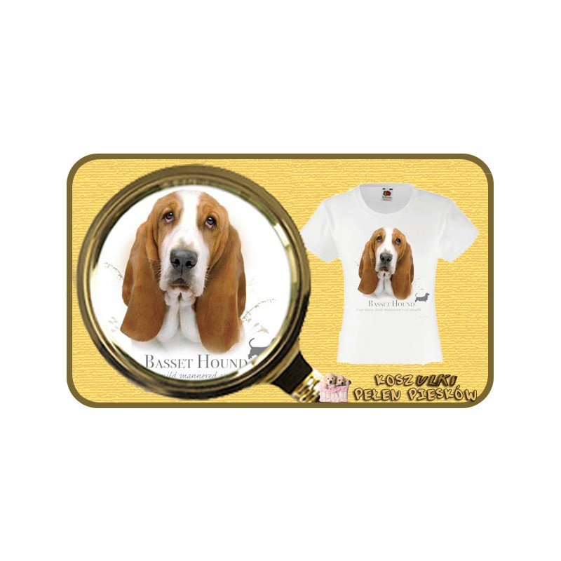 koszulka z psem bassetHR