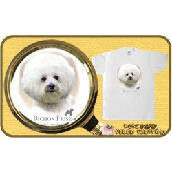 koszulka z psem bichon frise