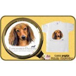 koszulka z psem jamnik długowłosy