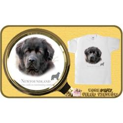 koszulka z psem nowofunland