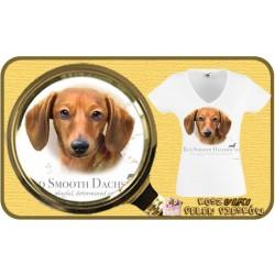 Koszulka damska z psem jamnik brązowy
