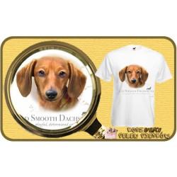 Koszulka męska z psem jamnik brązowy