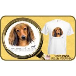 Koszulka męska z psem jamnik długowłosy