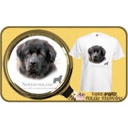 Koszulka męska z psem nowofunland