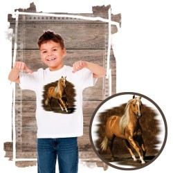 Koszulka chłopięca z koniem GOLDEN BOY