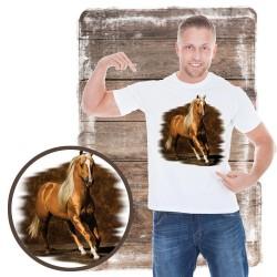 Koszulka męska z koniem GOLDEN BOY